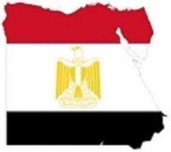 Egyptian Computational Chemists